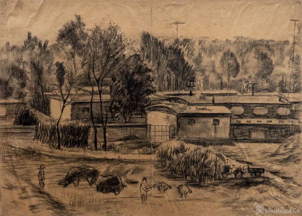 ,白文忠,纸本炭笔,1991年-中央美术学院附中素描100巡展图片